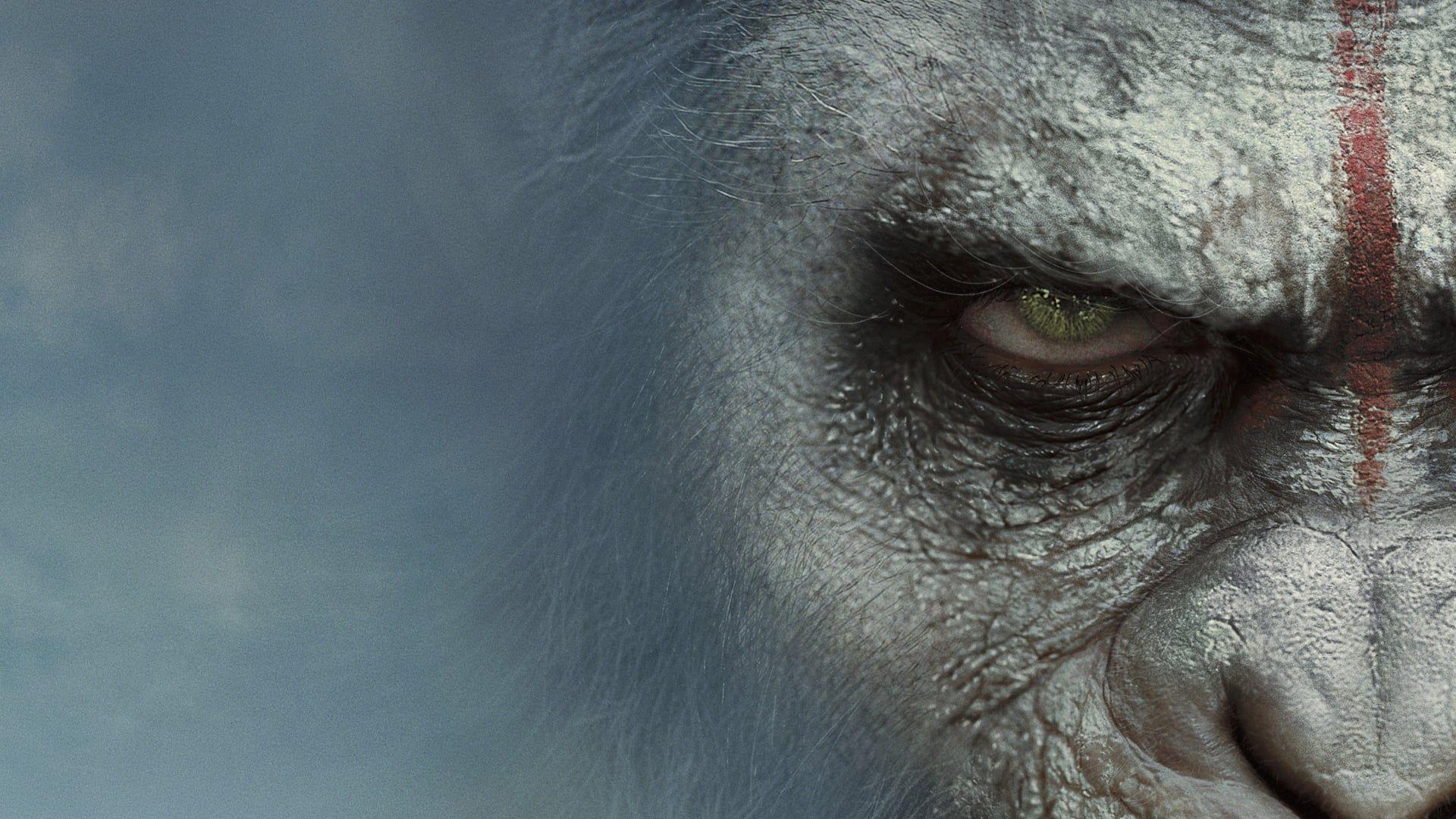 A Majmok Bolygoja Forradalom 2014 Online Teljes Film Filmek Magyarul Letoltes Hd A Majmok Bolygoja Forra Pianeta Delle Scimmie Film Online Guardare Film