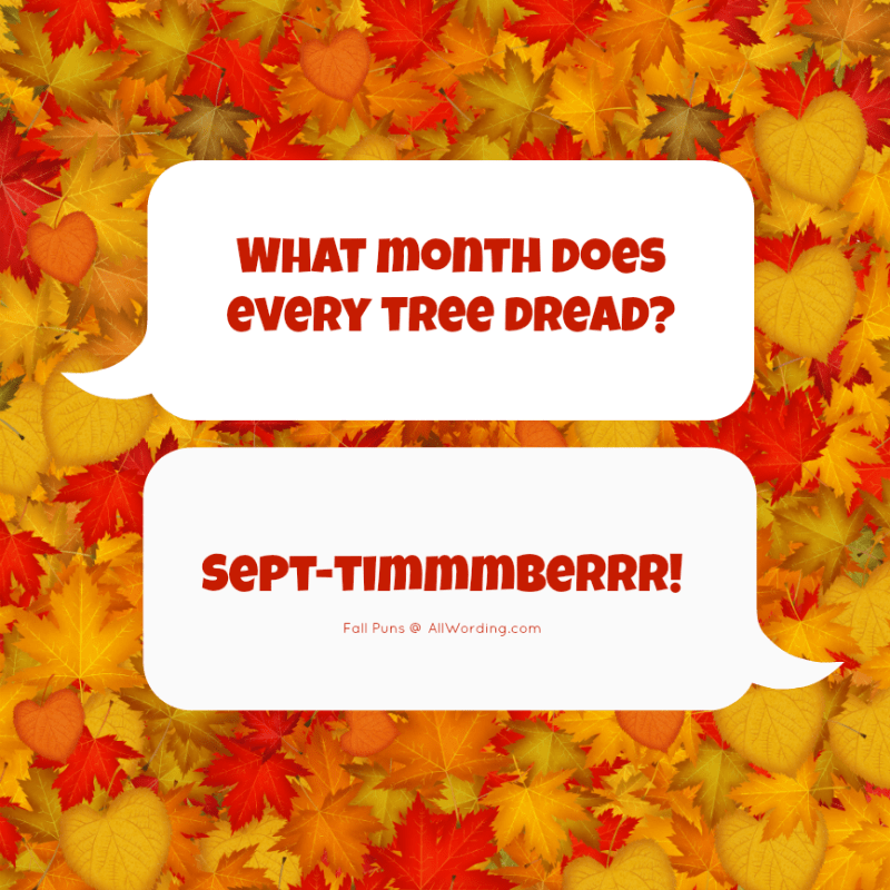 These Fall Puns Will Leaf You Smiling Fall Puns Fall Humor Corny Jokes