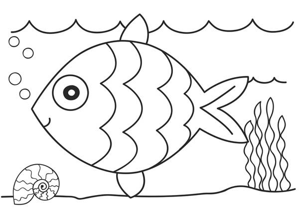 Coloring Page Fish : Wallpaper Download - cucumberpress.com | Coloring Page For Fish  | title