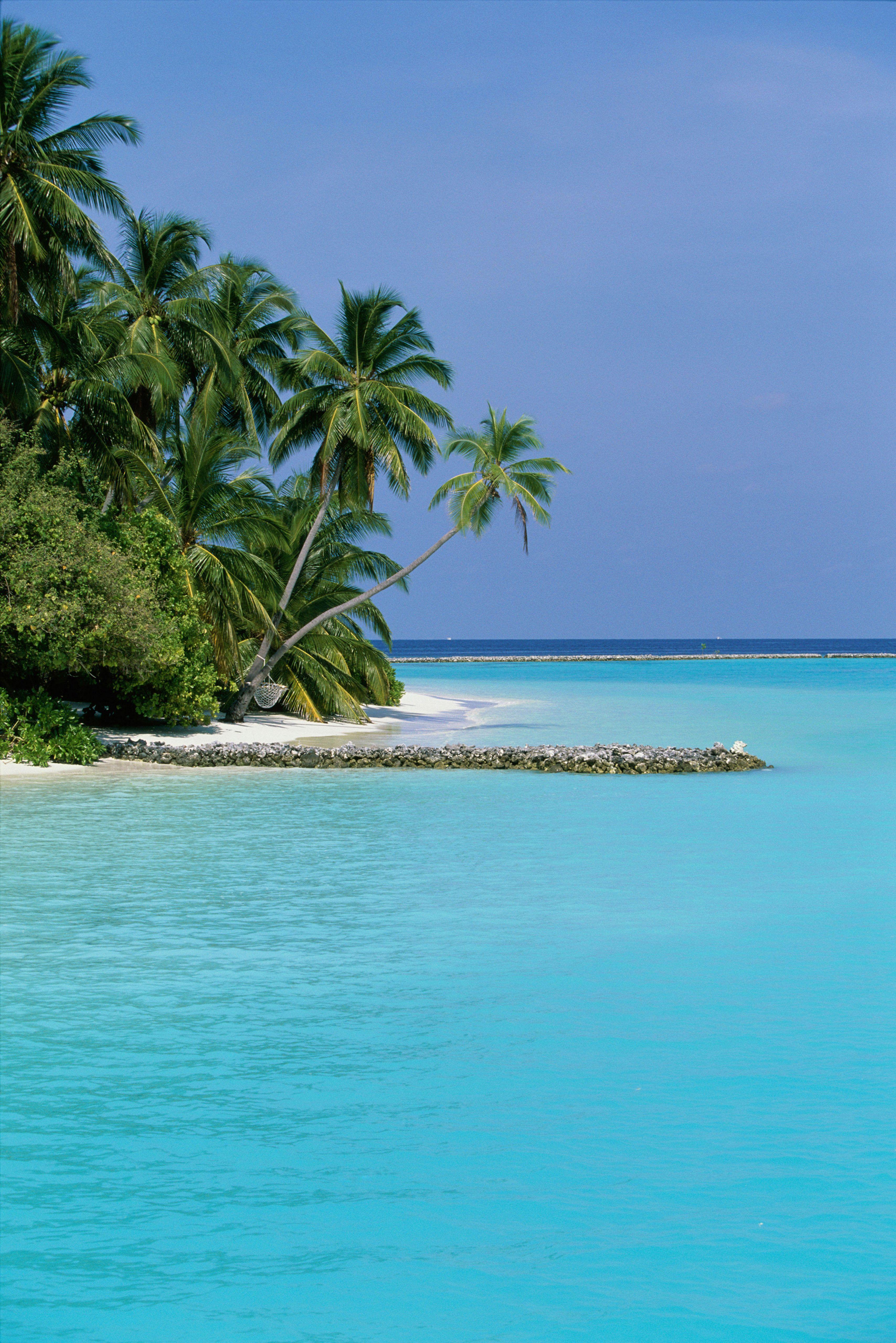 Tauchen Sie in das klare Wasser und bewundern Sie das Leben im Meer, entspannen Sie in einem Überwasserbungalow und segeln Sie von Insel zu Insel in dieser Inselgruppe im Indischen Ozean. Mit über 200 bewohnten Inseln und über 105 Urlaubsinseln kann man eine Reise auf die Malediven nach seinen eigenen Wünschen gestalten. #Expedia #ReiseDichInteressant