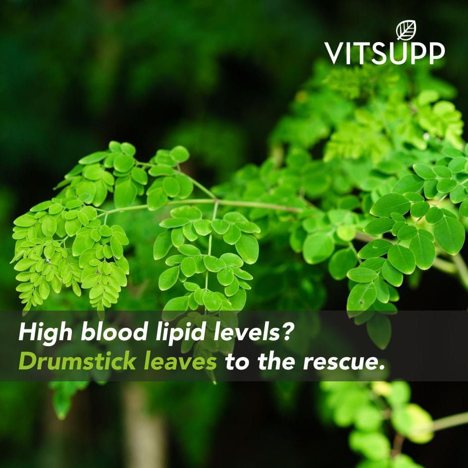 Drumstick Leaves Flowers Seeds Health Benefits And Side Effects With Images Moringa Moringa Benefits Health