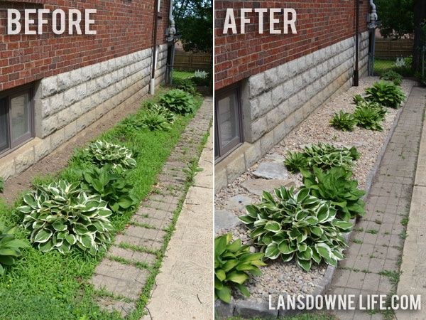 Landscape On A Budget Before And After