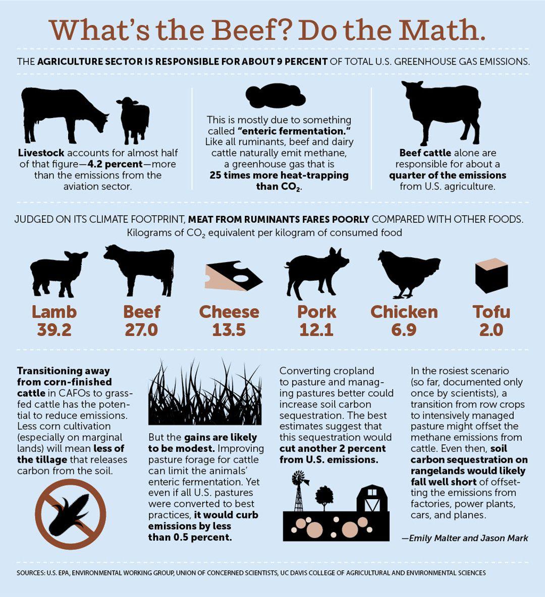 Environmental Stats On Going Vegan