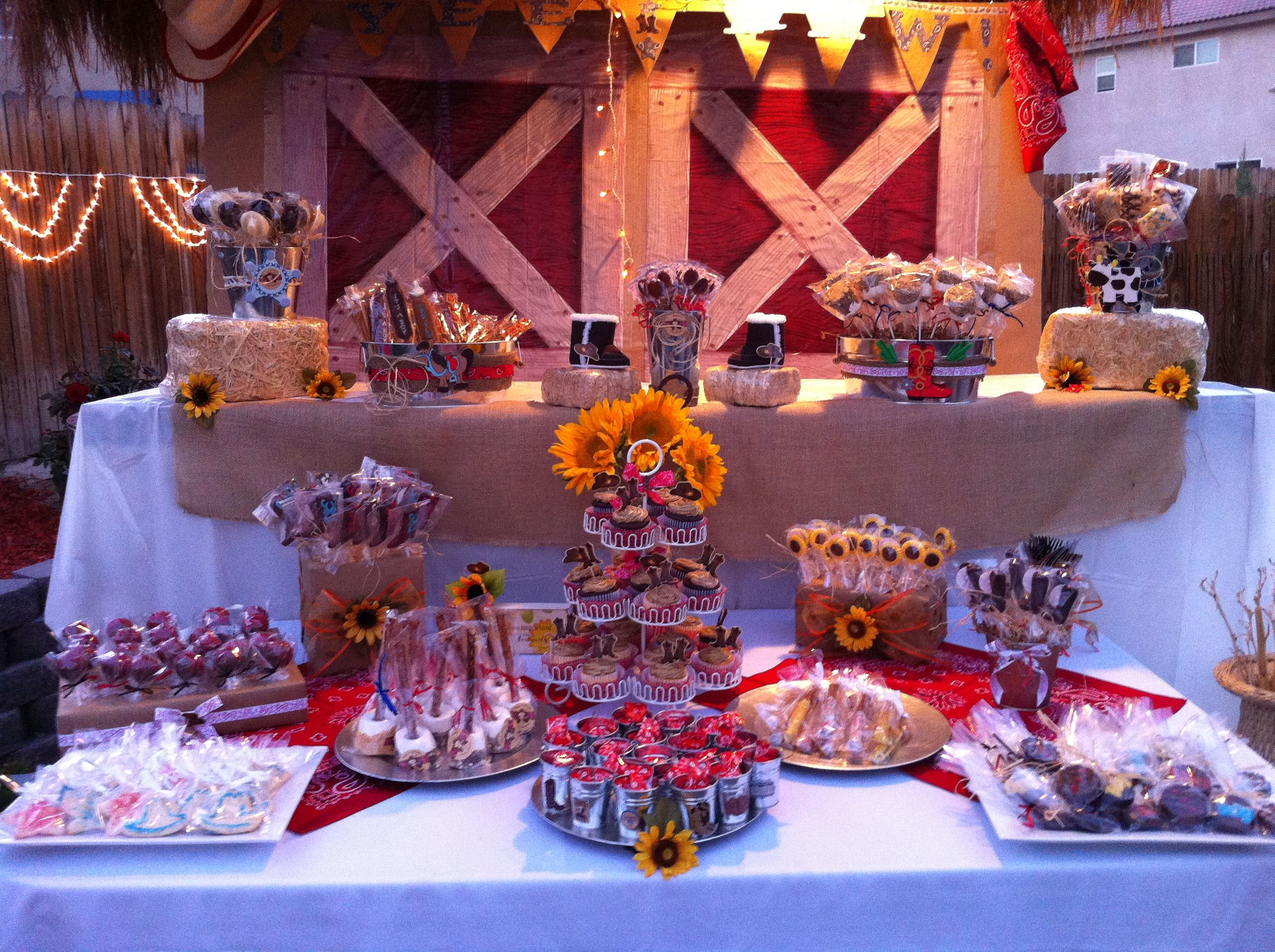 Western Theme Candy Table | Cake Pops | Pinterest | Western theme ...