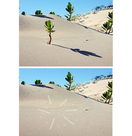 Cara menghilangkan objek pada foto di Photoshop | Photoshop, Desain grafis, Desain