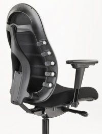Awesome Lovely Office Chairs With Lumbar Support 12 For Home