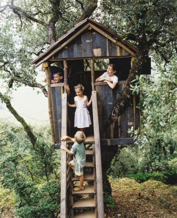 baumhaus bauen f r kinder mit einer treppe mitten im wald baumhaus bauen schaffen sie einen. Black Bedroom Furniture Sets. Home Design Ideas