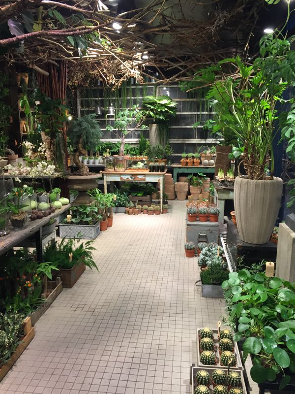 LOVE the idea of having my own green room spilling with plants and ...