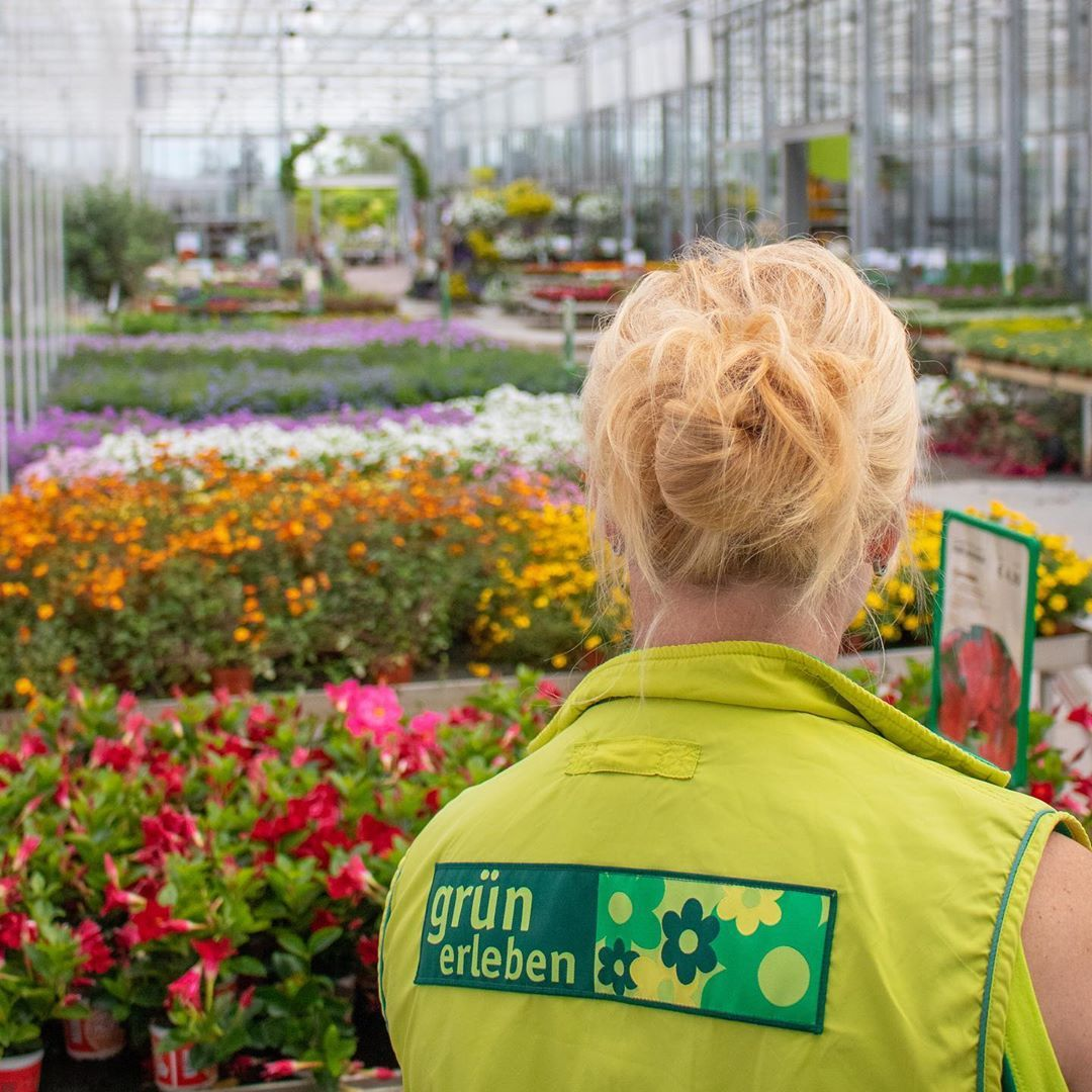 Mochten Sie Ihren Garten Neu Gestalten Und Brauchen Eine Gartenberatung Unsere Mitarbeiter Beraten Sie Direk Garten Neu Gestalten Garten Gartencenter