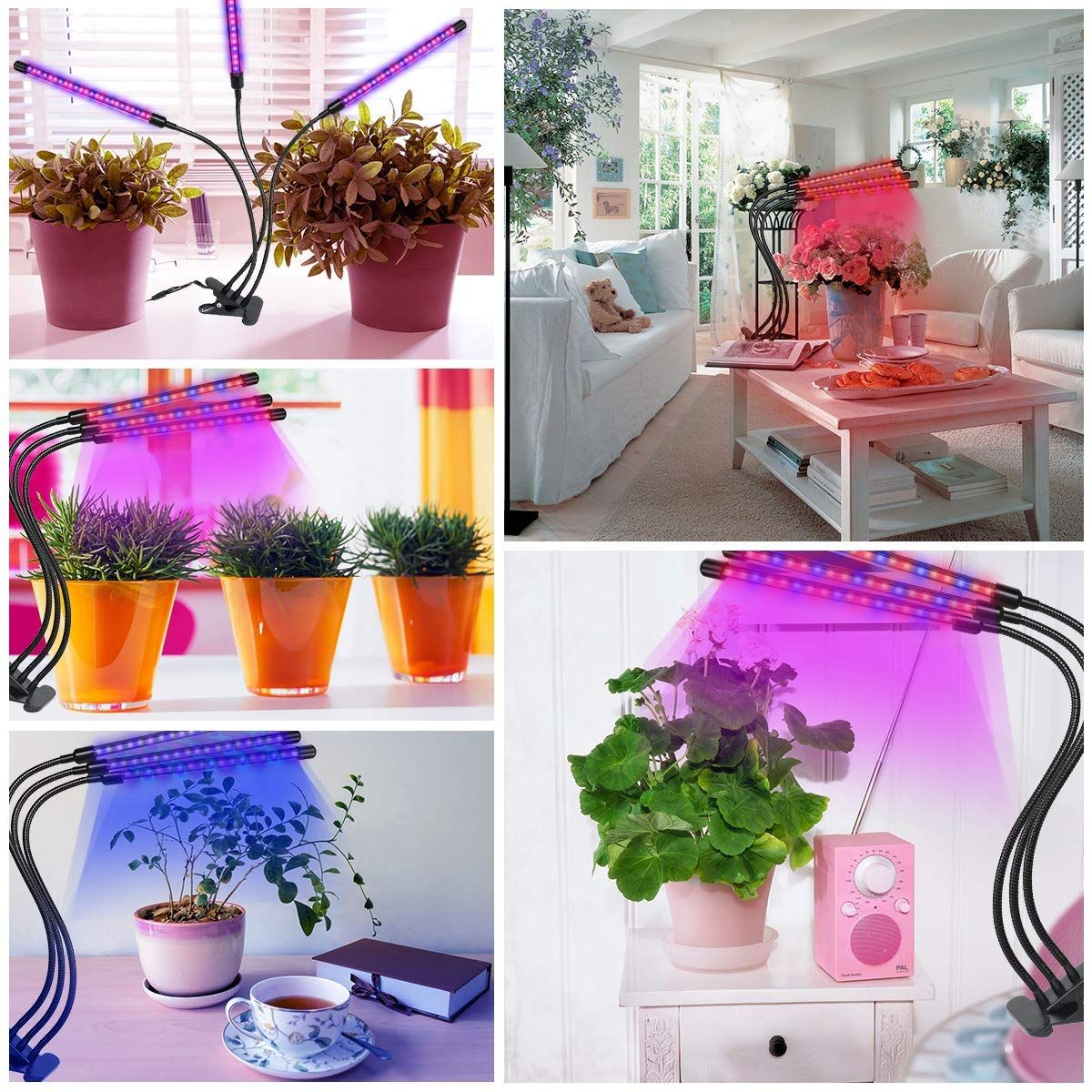 【Best Gift For Indoor Plants】 45W Led Grow Light Bulb Use 640 x 480