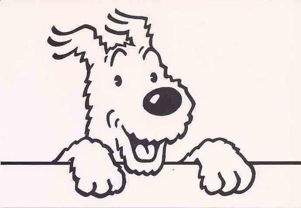 Hergé, Tintin, Herge Tintin