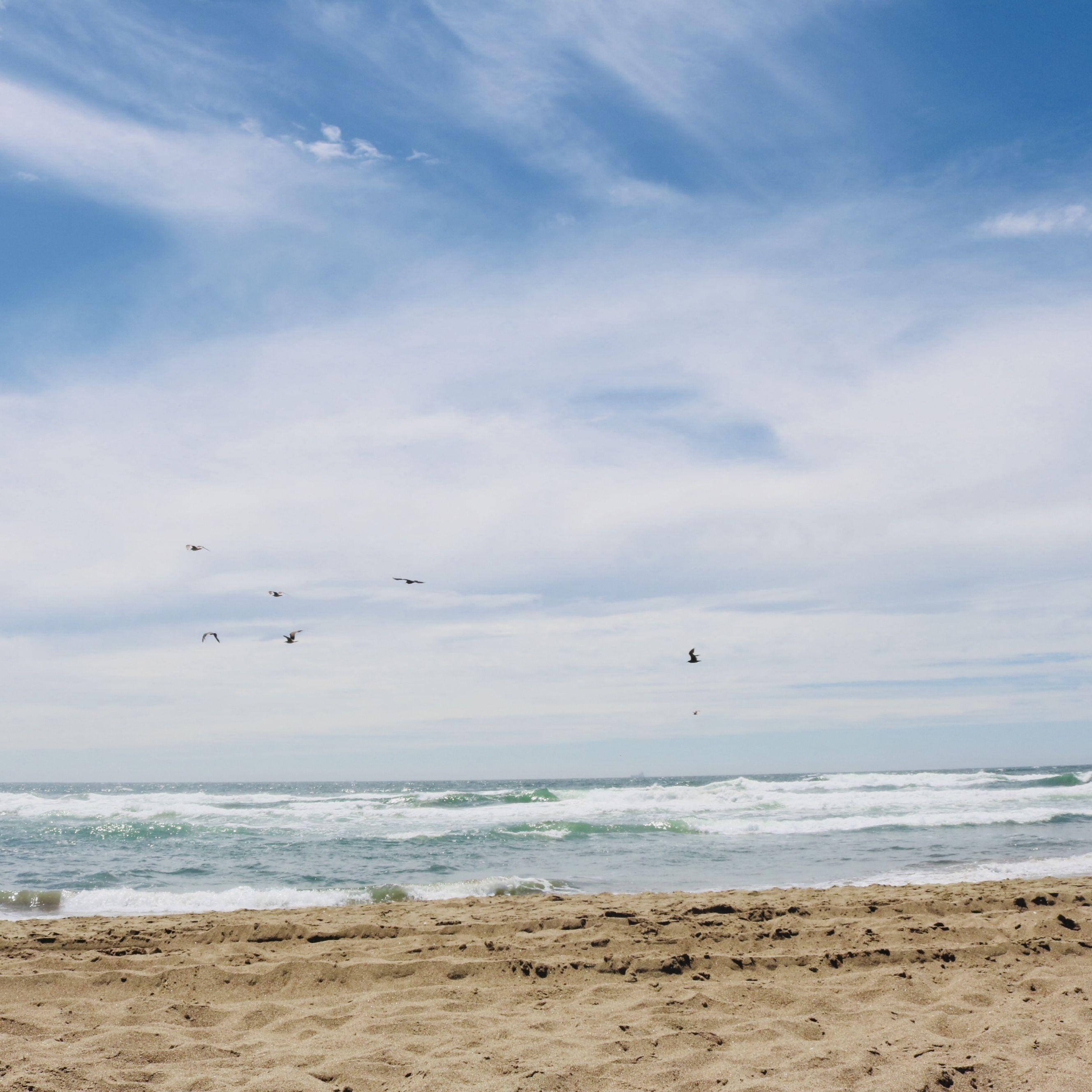 San Francisco Beaches. Beaches in San Francisco? You bet!
