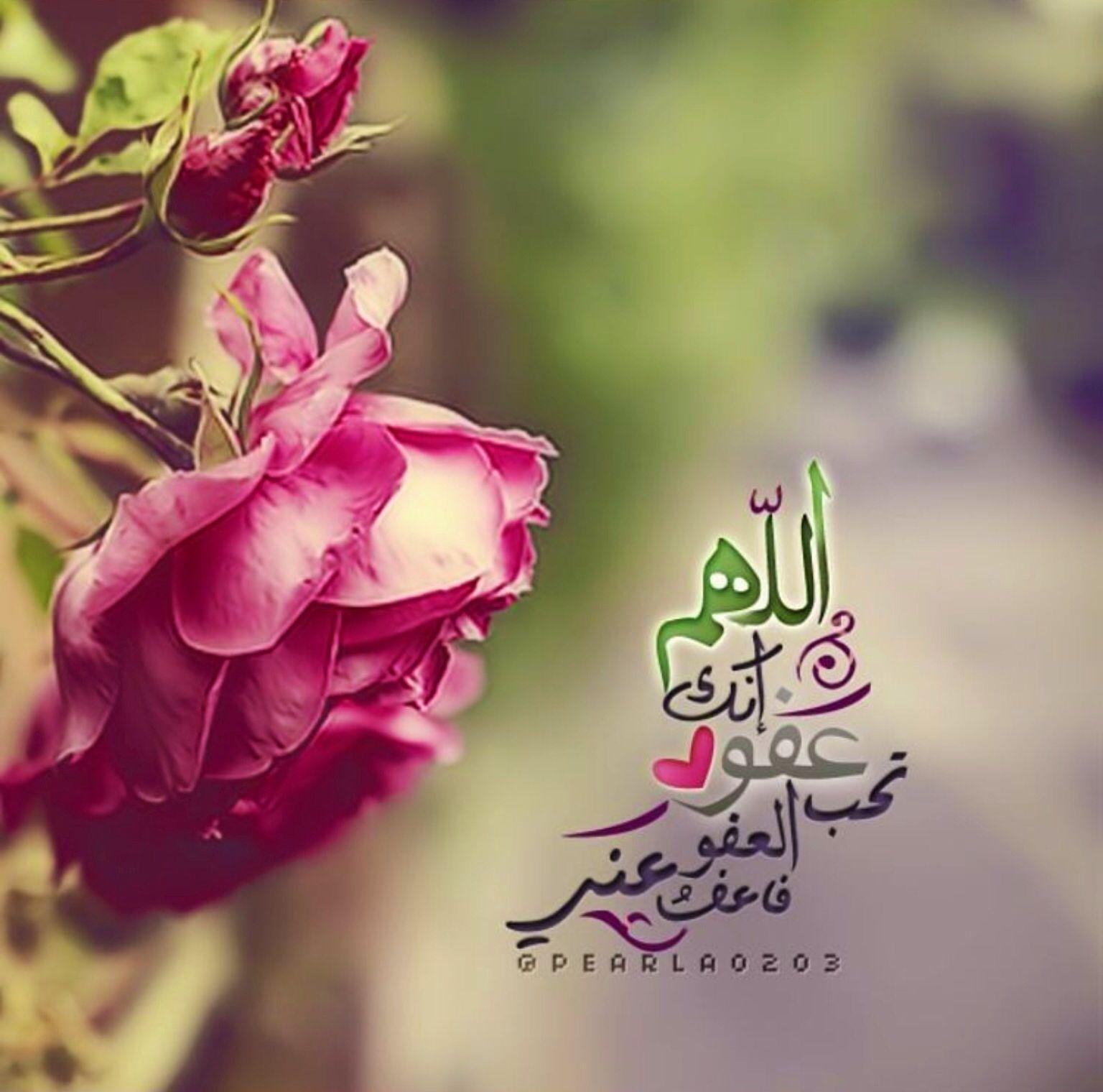 اللهم انك عفو تحب العفو فاعفو عنا Beautiful Quran Quotes Rose Flowers