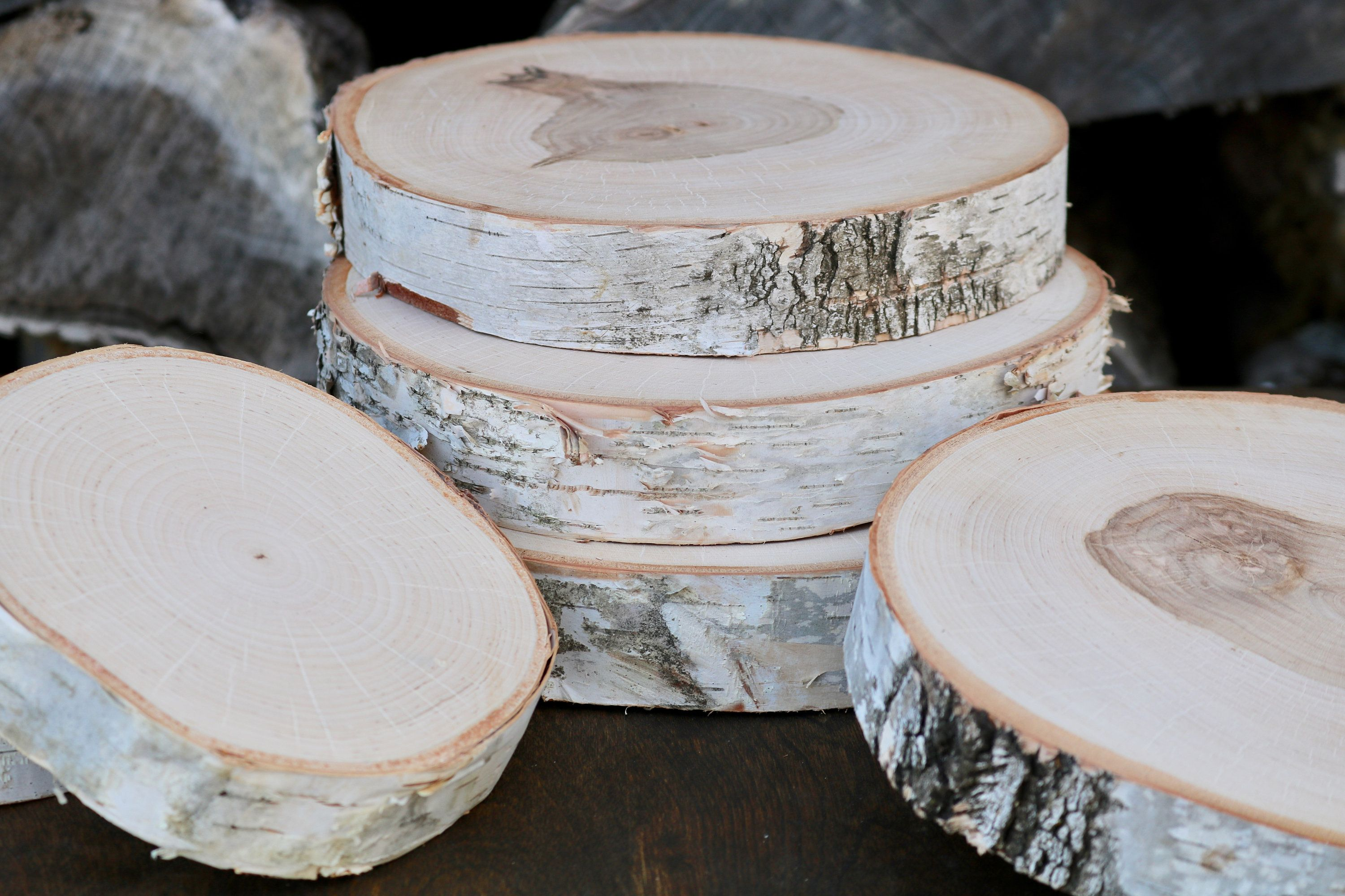 White Birch Slices Thick Wood Slices Tree Slices Natural Etsy In 2020 Wood Cake Stand Wood Slices Wood Slab