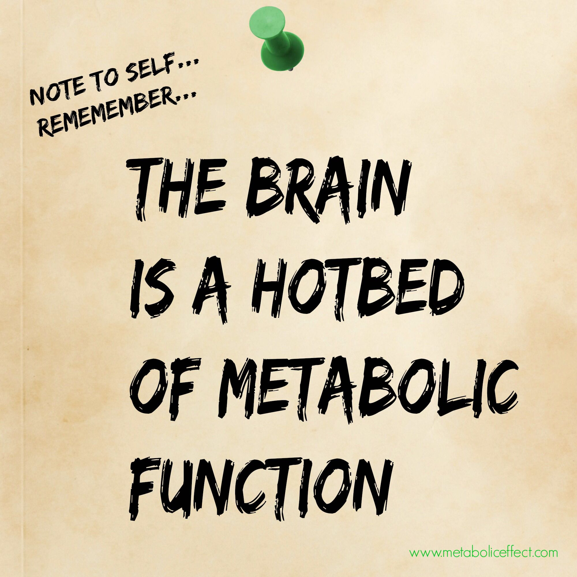 Pin on lose weight here the metabolic secret to beating