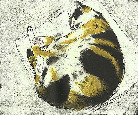 Coco Sleeping |  etching  of a tortoise cat, 2003 | Elizabeth Blackadder
