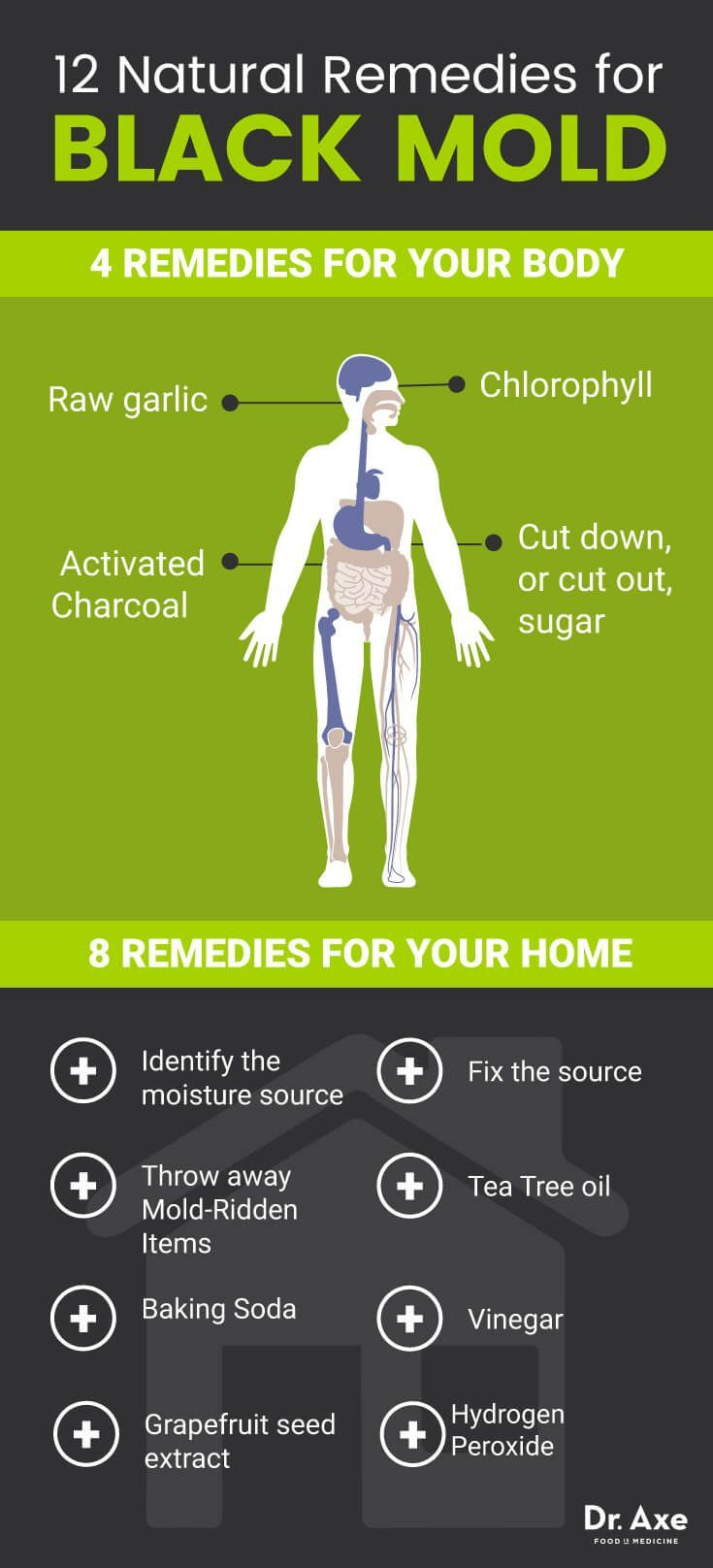 Natural Treatments For Black Mold Dr Axe
