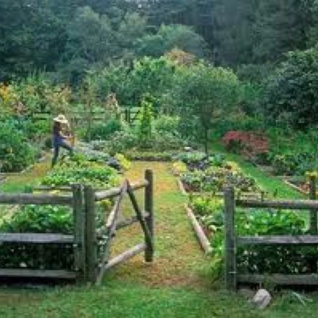 Genial A Potager Is A French Term For An Ornamental Vegetable Or Kitchen Garden.  The Historical