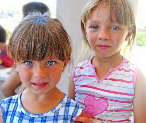 Blond syrians 8