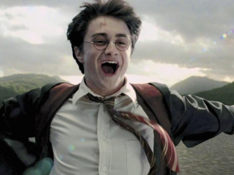Pin On Harry Potter Trivia