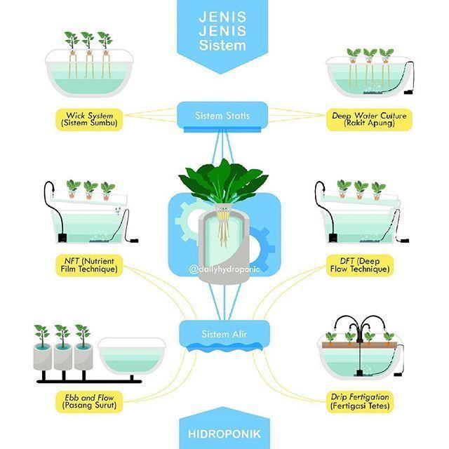Jenis - Jenis Sistem Hidroponik      #hydroponics - fresh blueprint sistem informasi adalah