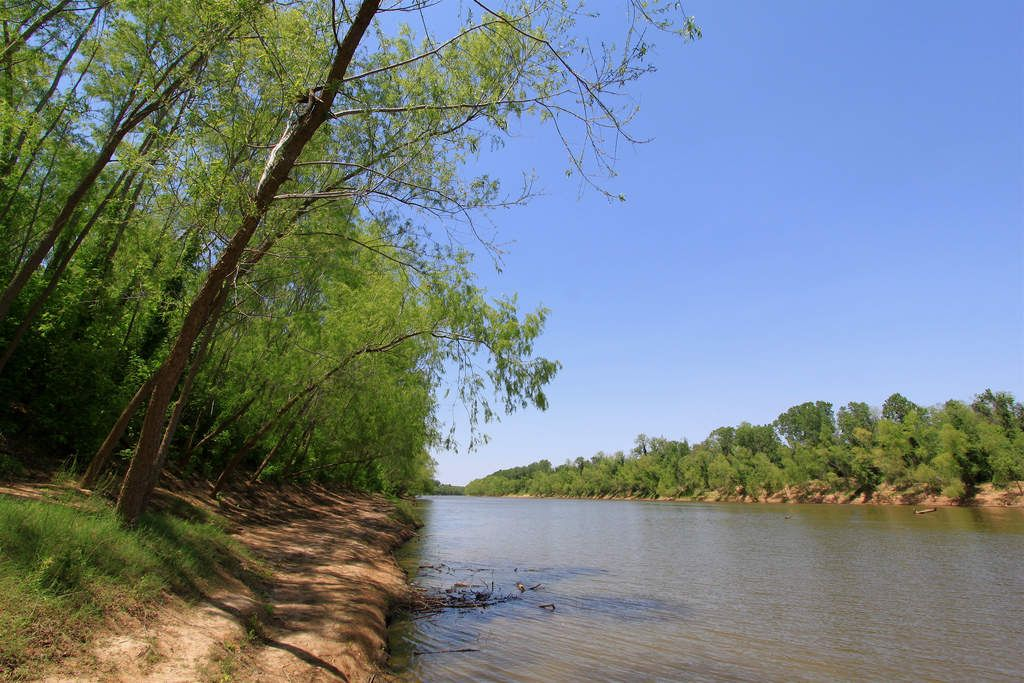 10 Amazing Hikes Near Houston | State parks, Best hikes ...