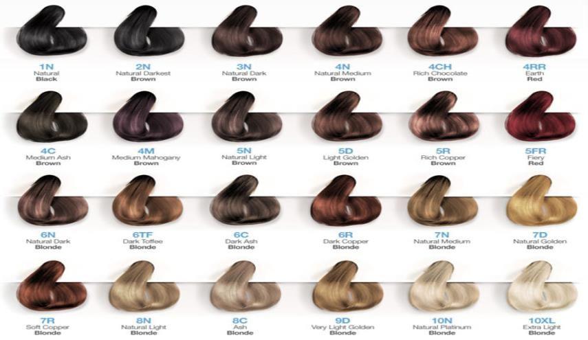 شبکه الکوثر رنگ مو آینه ای تمام نما از وضعیت سلامت بدن تهران الکوثر در جدیدترین پژوهش با استفاده از Hair Color Chart Brown Hair Color Chart Vegan Hair Dye