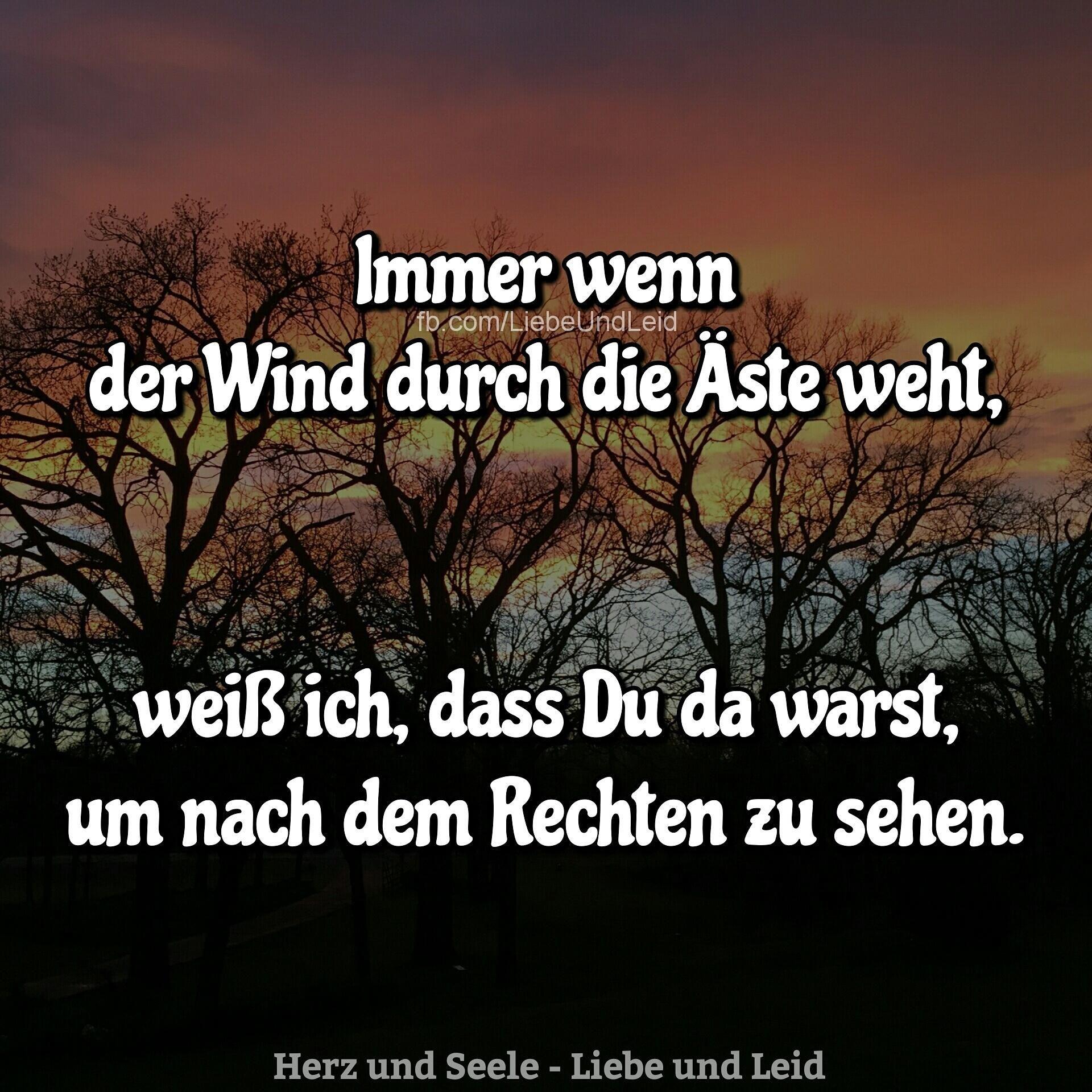Immer wenn der Wind … | Zitate und Sprüche | Decor