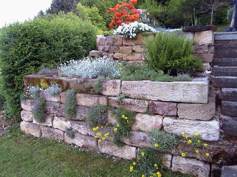 natursteinmauer garten - google-suche | garten | pinterest | suche, Garten Ideen