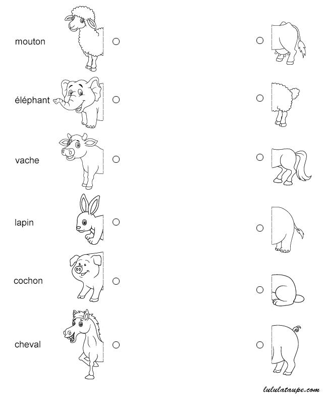 Exercice à imprimer, relier l'avant et l'arrière des animaux   Jeux éducatifs maternelle, Jeux ...