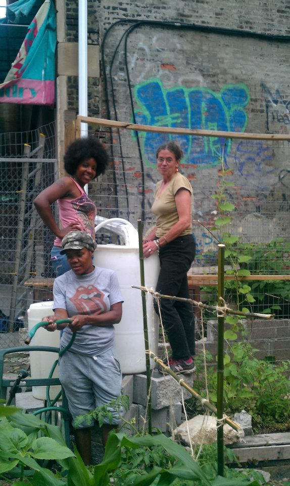 462 halsey community garden in bed stuy brooklyn received 2000 to convert a vacant - Halsey Garden