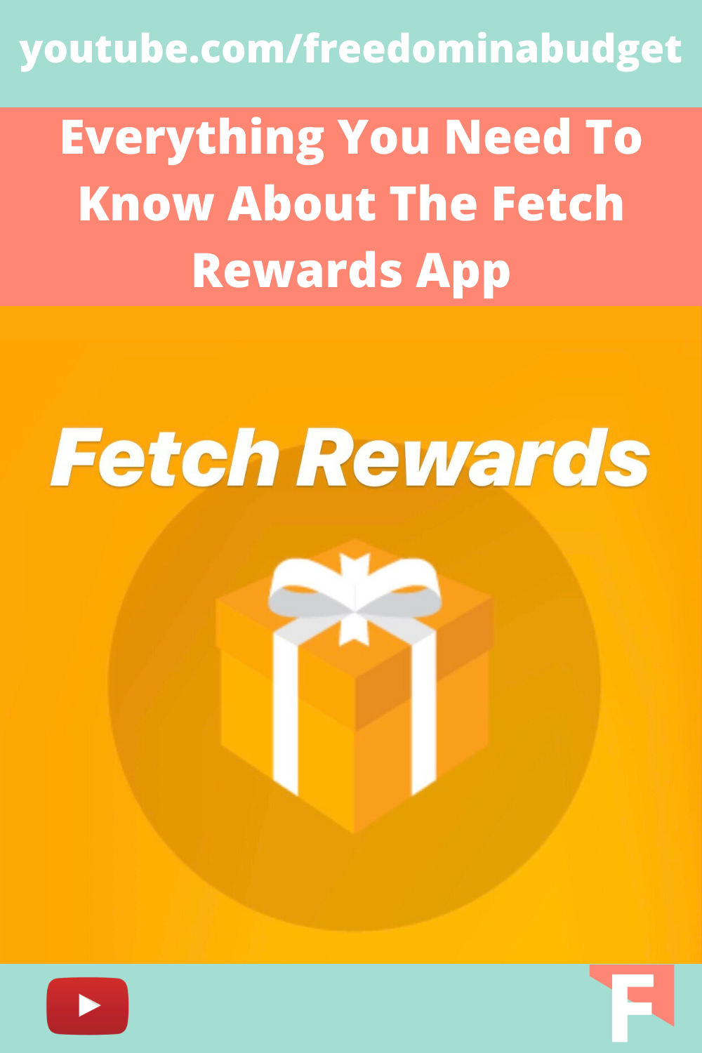 Everything You Need To Know About The Fetch Rewards App in