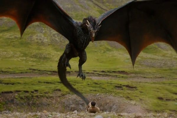 real dragons found alive - Google Search   dragons   Pinterest ...