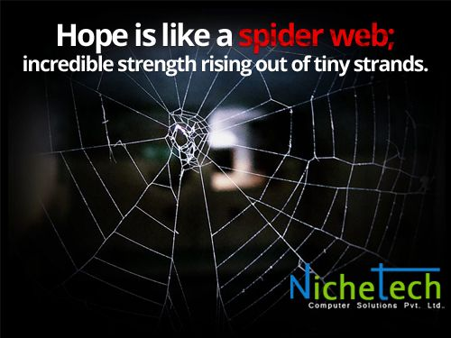 Hope Is Like A Spider Web; Incredible Strength Rising Out