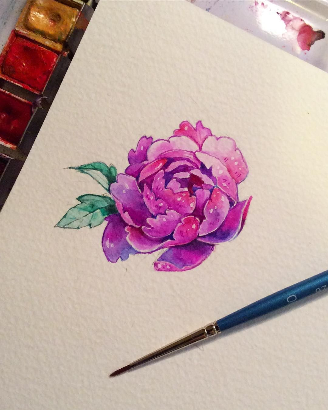 Heres a small peony flower for all you lovely folks out there