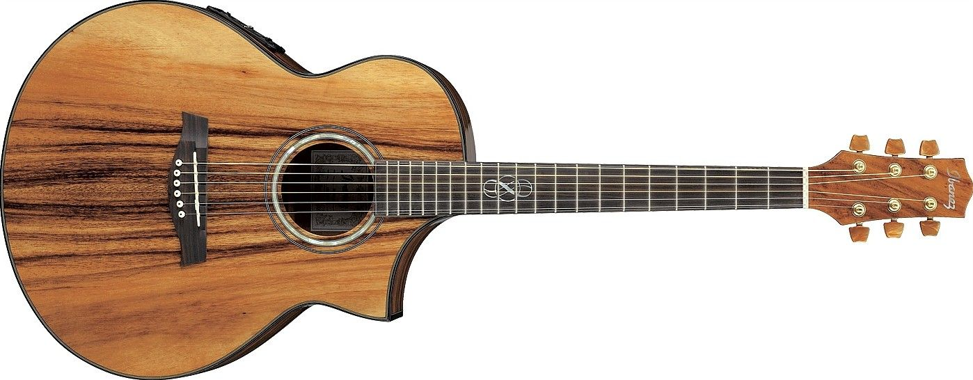 Ew50 By Ibanez Ibanez Acoustic Electric Guitar Acoustic Electric