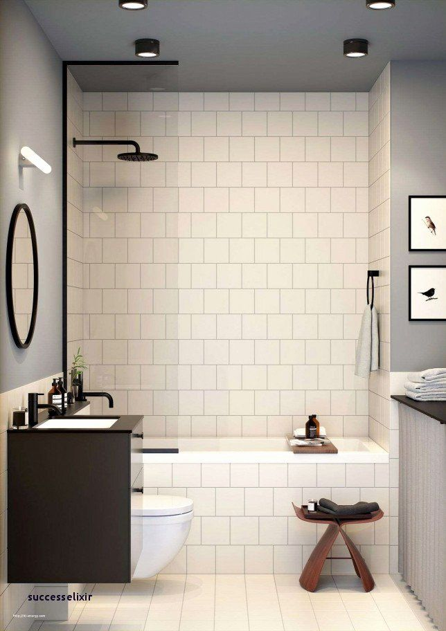 Bathroom Interior Tiles Elegant 29 Best Toilet And Bath Construction Successelixir Gallery Bathroom Design Small Modern Bathroom Design Small Bathroom Mirror