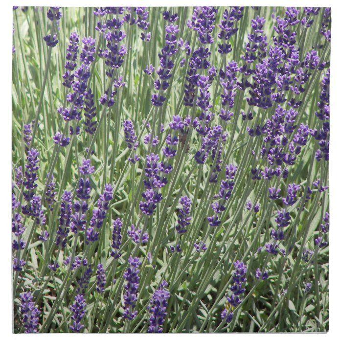 Lavender Flowers Floral Photo Napkin Zazzle Com In 2020 Floral Photo Lavender Flowers Flower Photos