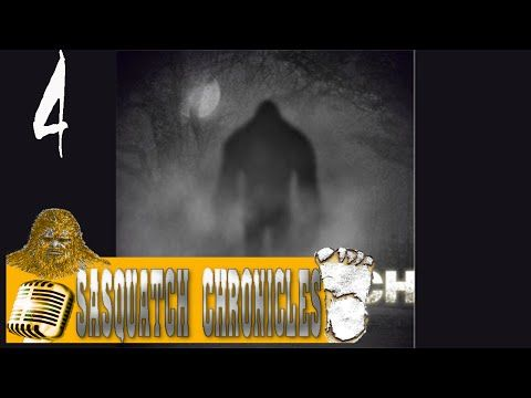 Bigfoot Hotspot Radio Sc Ep4 Infrasound And Bigfoot Researcher
