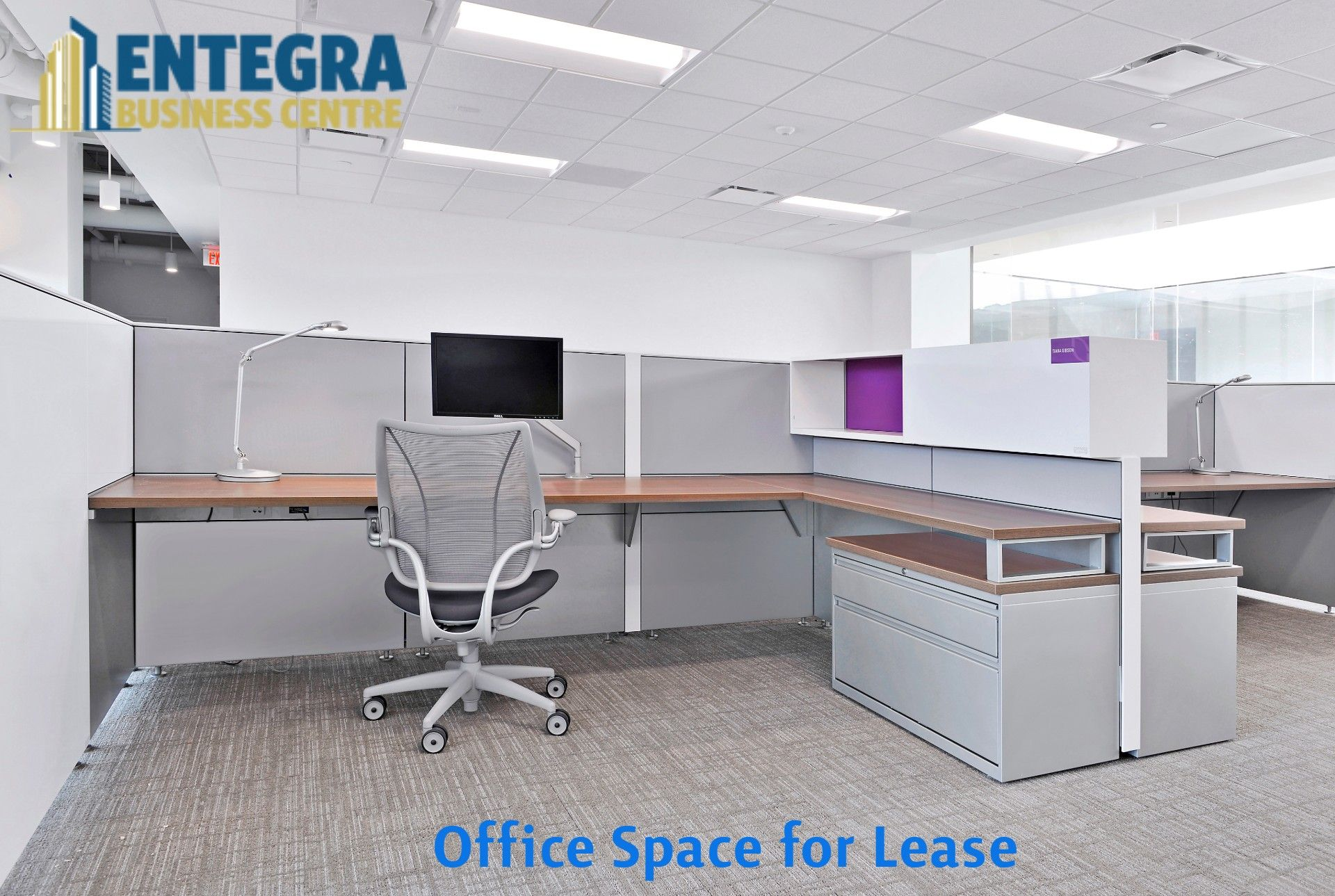 Find The Best Shared Furnished Office Space For Lease Office Interiors Office Space Office Rental