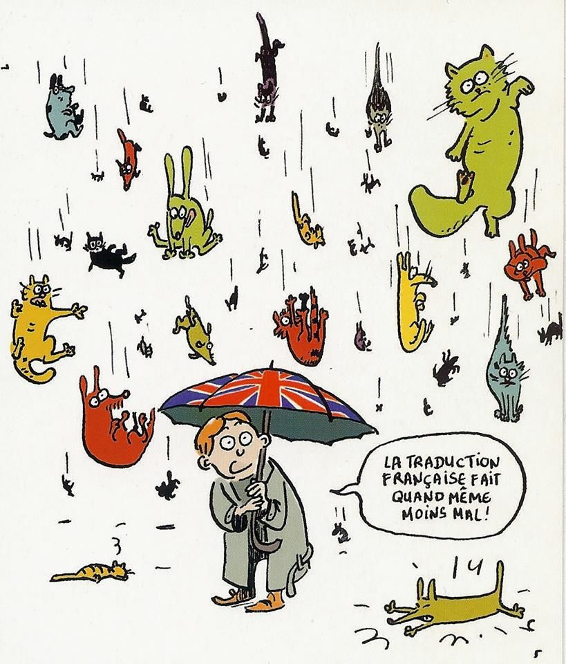 In English It S Raining Cats And Dogs In French It S Raining