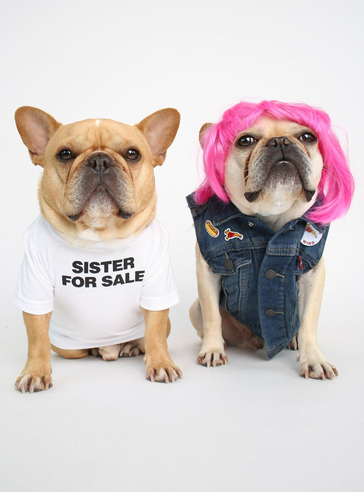 Sister For Sale Dog Tee Custom Dog Shirts Dogs Dogs Tee