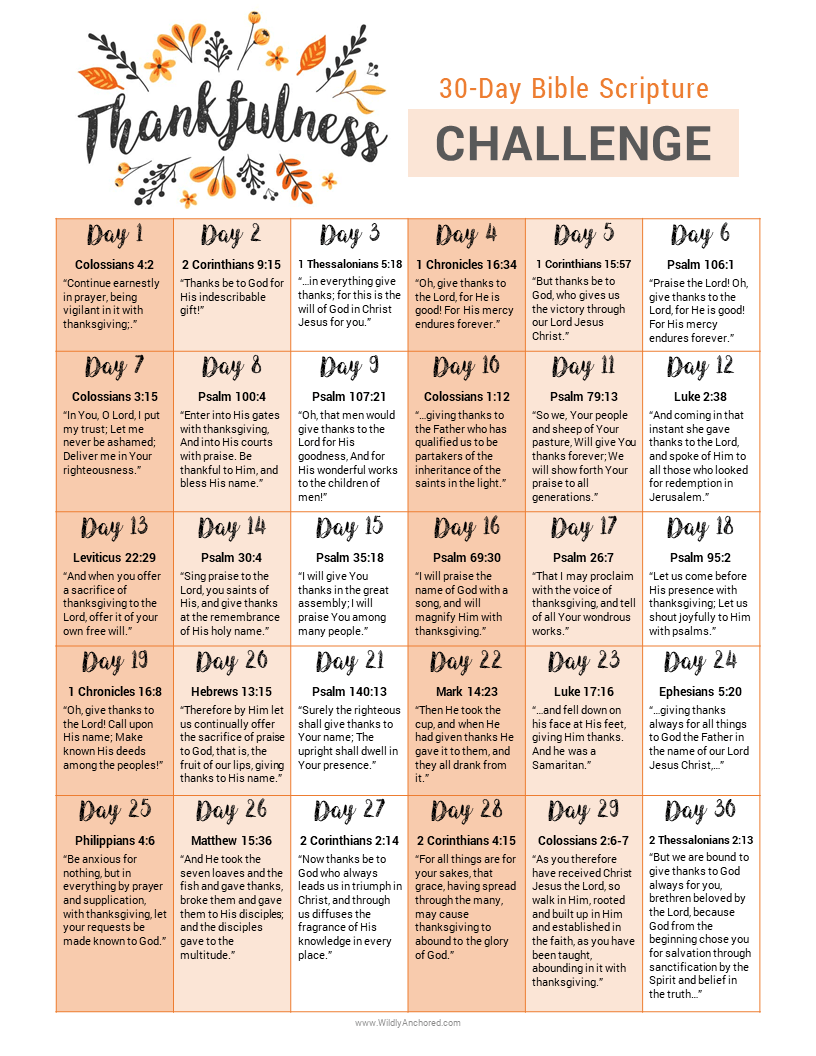 Cultivating a Heart of Thankfulness + FREE 30-Day Thankfulness Challenge #bible