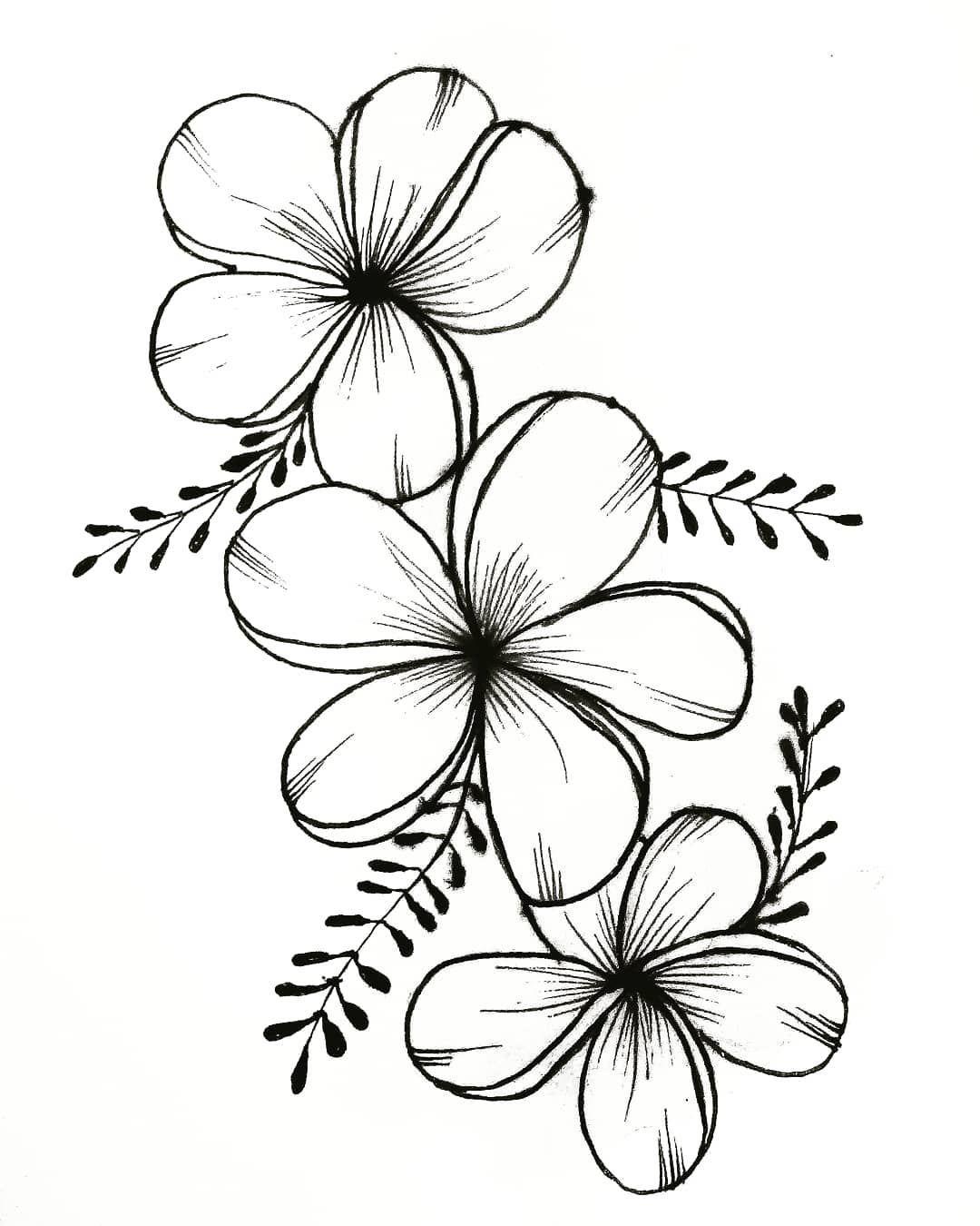 drawings of flowers - 736×920
