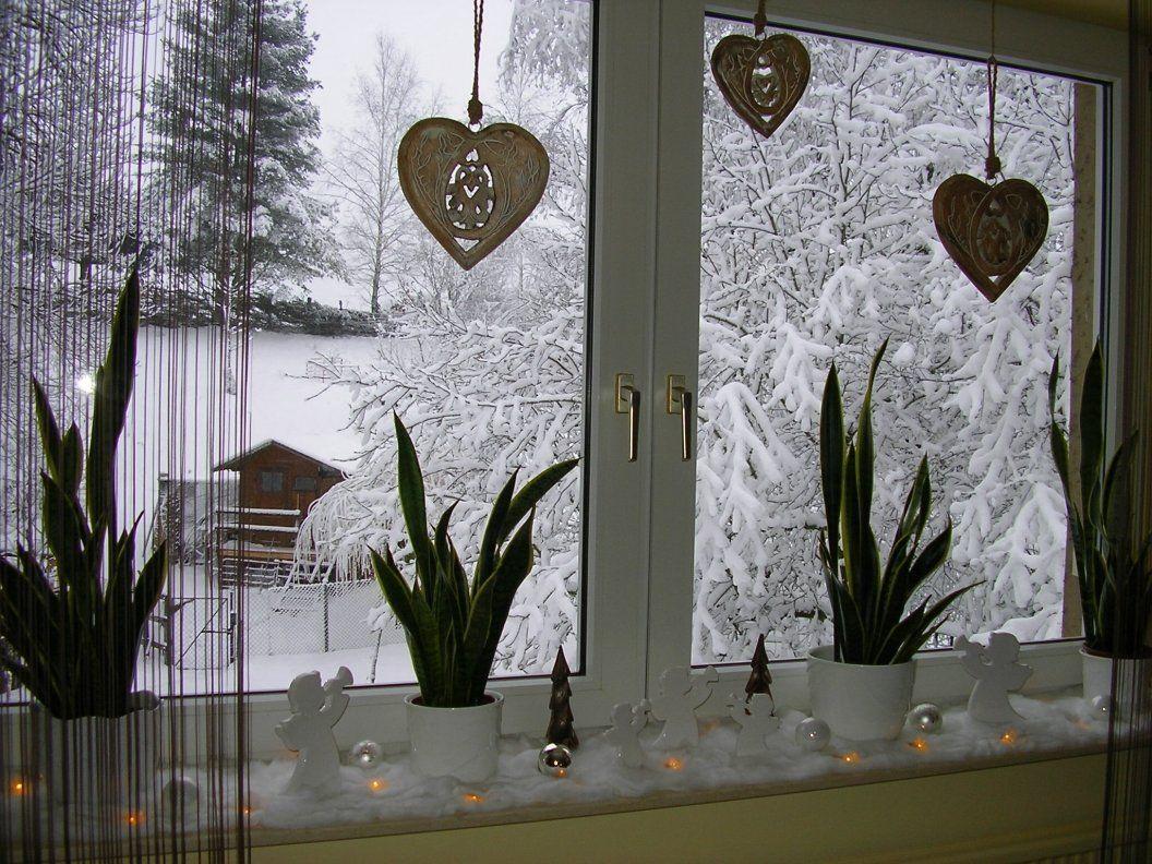 Wohnzimmerfenster 1 Normalerweise Sollten Hier Auf Der Fensterbank Noch Paar Weitere Bumchen Stehen Die Ich Bestellt
