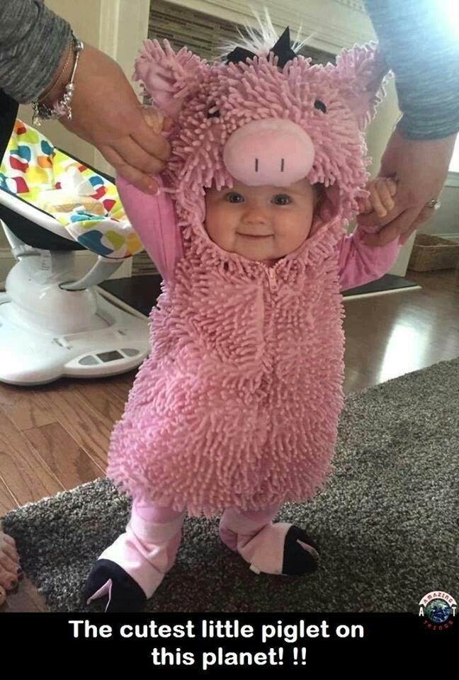 look at this adorable smiling little girl in a pig costume