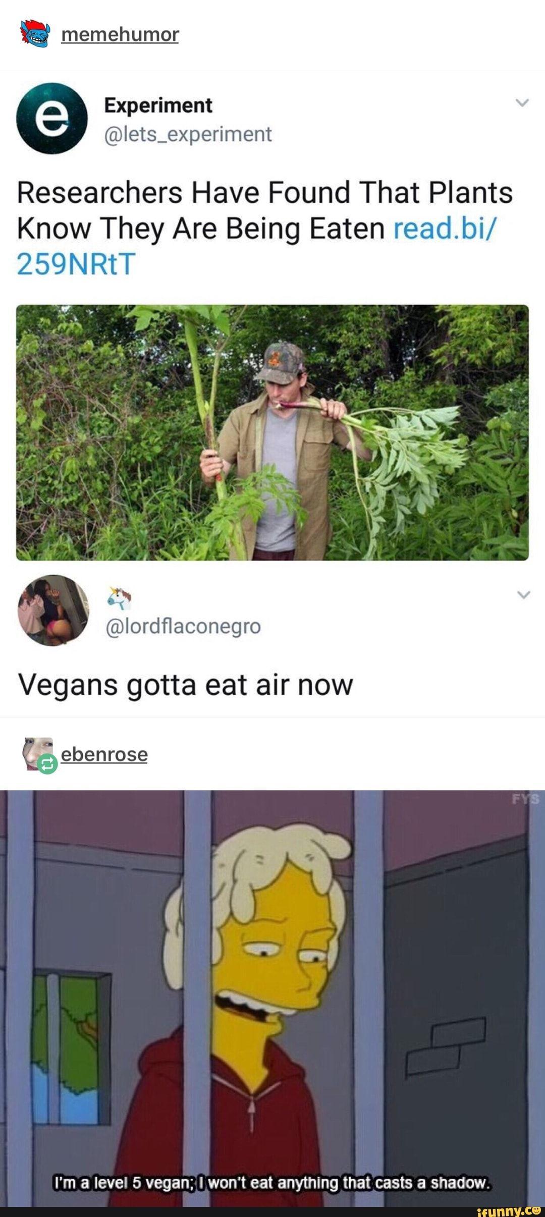 goeatabagofdicksgreg, fuckyougreg, vegan, plant, simpsons - iFunny :) Super  Funny,. Read it