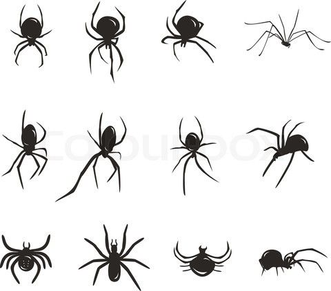 Black Spider Vector Silhouette Insects Vector Colourbox Web Tattoo Spider Tattoo Spider Web Tattoo
