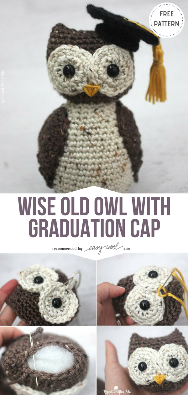 Crochet Wise Old Owl with Graduation Cap Free Crochet Pattern on  Easywool.com  freecrochetPatterns 044d0868c5b
