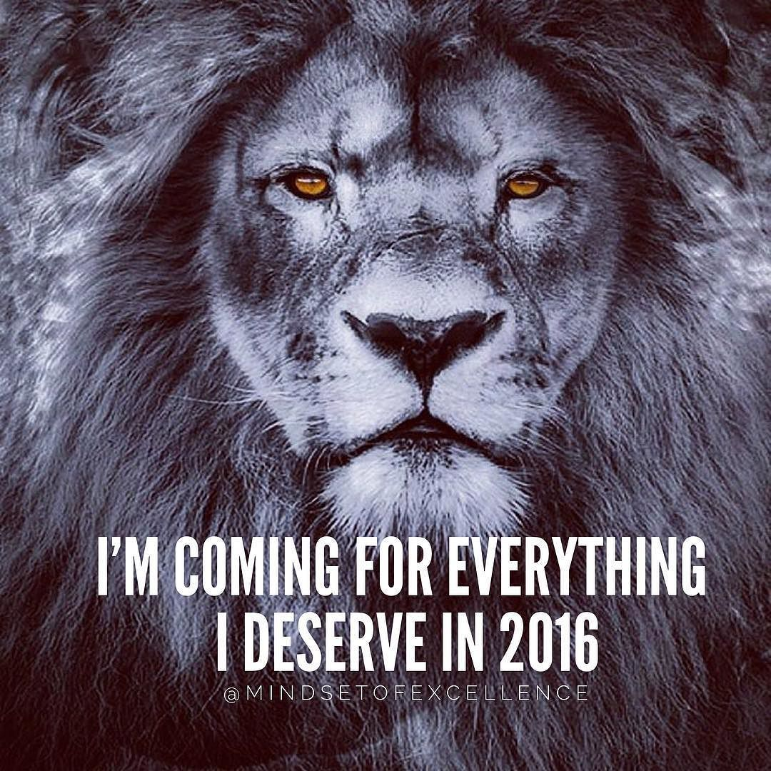 Stein M G On Instagram Courtesy Of Boss Lv 1 Make 2016 Your Best Year Ever Inspiring Quotes About Life Great Inspirational Quotes Warrior Quotes